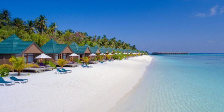 Meeru island resort and spa cover photo